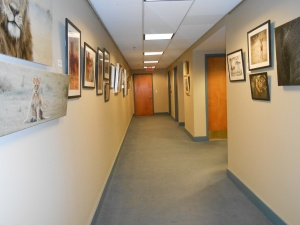 The Gallery at 100 Market Street 3rd floor