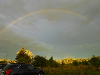 my full rainbow