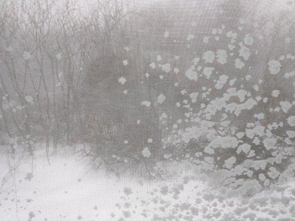 """Winter Storm Iola"", (c)Daryl-Ann Dartt Hurst, 2015, digital photograph"